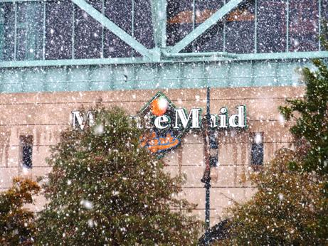 1204_snow1.jpg